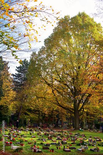 Deurstickers Begraafplaats Friedhof