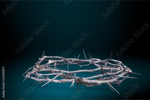 Fotografia Crown of Thorns