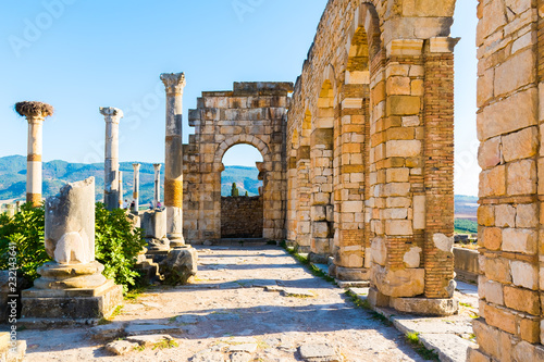Fotografía  Roman Ancient city of Volubilis, Meknes, Unesco World Heritage Site in Morocco