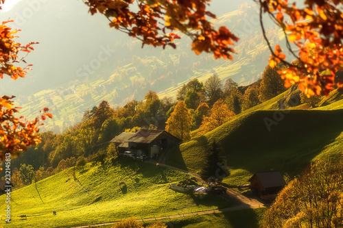 Fotobehang Honing Beautiful alpine landscape in Switzerland , autumn sunny day.
