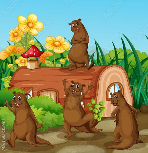 Spoed Foto op Canvas Kids Happy otter next to wooden house