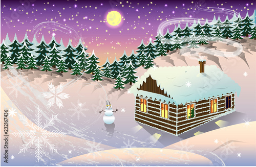Foto op Aluminium Snoeien night winter landscape with house and forest background.