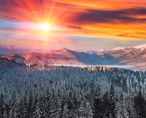 Majestic landscape in the winter mountains at sunrise. Dramatic and picturesque wintry scene. Retro filter. Filtered image: instagram toning effect. Happy New Year!