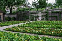 A Beautiful Botanical Garden