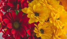 Still Life Of Red And Yellow F...