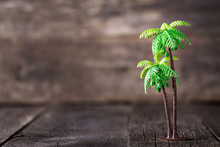Small Toy Of Palm Tree On Wood...