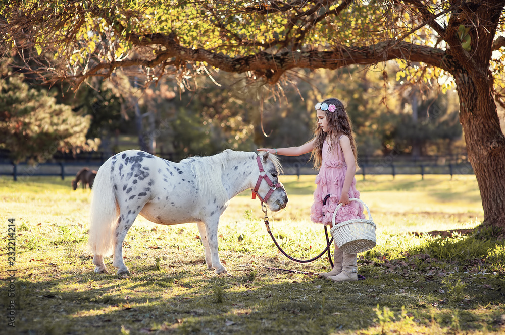 Fotografie, Obraz Cute little girl and pony in a beautiful park