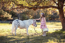 Cute Little Girl And Pony In A...