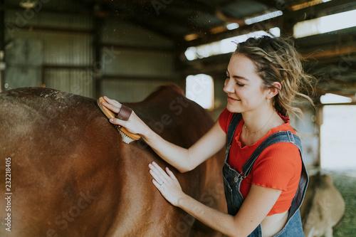 Girl brushing a chestnut horse