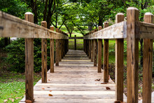 Green Park In USA During Spring In Alabama Southern City, Nobody, During Sunny Day With Wooden Boardwalk Trail Path