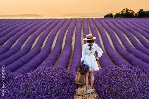 Fotobehang Lavendel champ de lavande