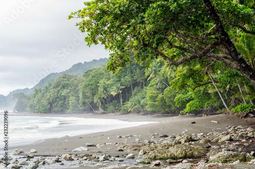 Beach at Corcovado National Park, Costa Rica Tablou Canvas
