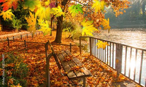 Obraz Ruhe am See: Indian Summer, Schönheit des Herbstes am Abend, Spätsommer, Indian Summer, wundervolle Farben im Wald, weiches, stimmungsvolles Licht :) - fototapety do salonu