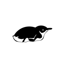 Penguin Chick Lying On The Stomach. Vector Monochrome Illustration. Black And White Image