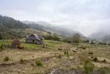 Fototapeta Krajobraz - jesienny pejzaż