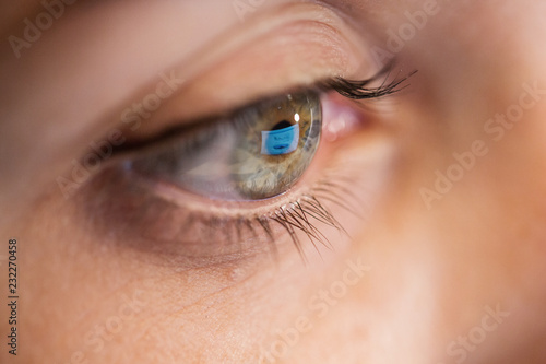 vision, business and education concept - close up of woman eye looking at comput Canvas Print