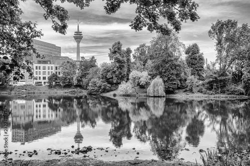 Fotografia  Düsseldorf Park