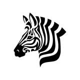 Fototapeta Fototapeta z zebrą - Zebra Head