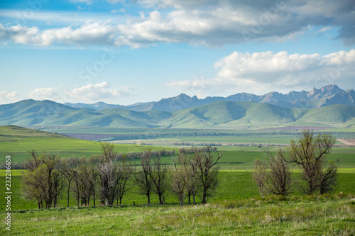 Deurstickers Pool Cultivated fields in hilly terrain in spring