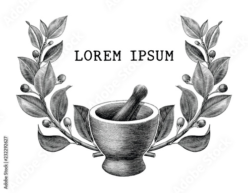 Photo  Mortar and pestle with herbs frame vintage engraving illustration logo isolated