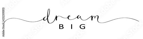 DREAM BIG brush calligraphy banner - fototapety na wymiar
