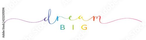 Fototapety, obrazy: DREAM BIG brush calligraphy banner