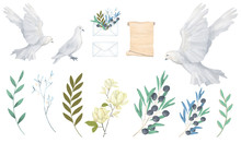 Pigeon And Olive Clip Art Digital Drawing Watercolor Bird Fly Peace Dove For Wedding Celebration Illustration Similar On White Background