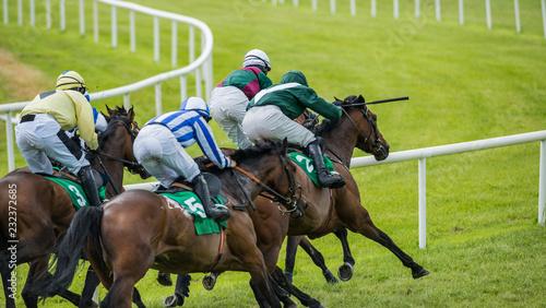 Fotografia, Obraz Group of jockeys and race horses galloping down the track