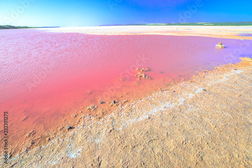 Poster Oceanië Pink Salt Lake at Gregory in Western Australia. Scenic shore of Hutt Lagoon between Geraldton and Kalbarri, with a vivid pink color for the presence of algae in summer.Horizon blue sky with copy space