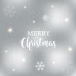 Snowflakes Merry Christmas Card. Vector Silver Design.
