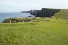 Duncansby Head Green Landscape...