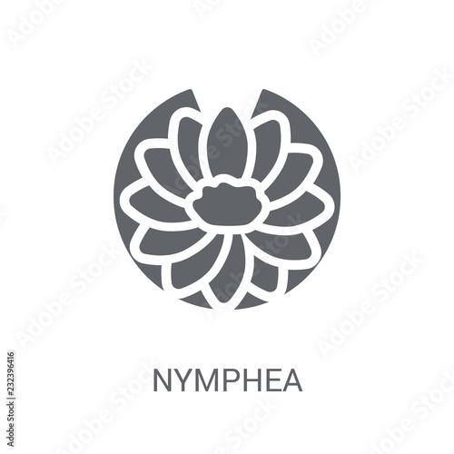 Fotografie, Obraz Nymphea icon