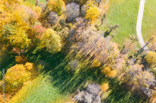 aerial view of city park during sunny weather. bright colors of autumnal park trees
