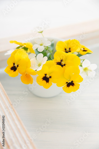 Foto op Plexiglas Pansies 黄色いパンジー