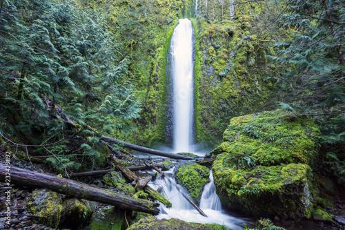Gorton Creek Falls, Columbia River Gorge, Oregon Wallpaper Mural