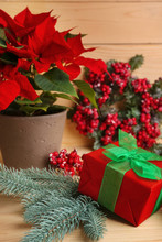 Christmas Flower Poinsettia With Gift Box On Wooden Table