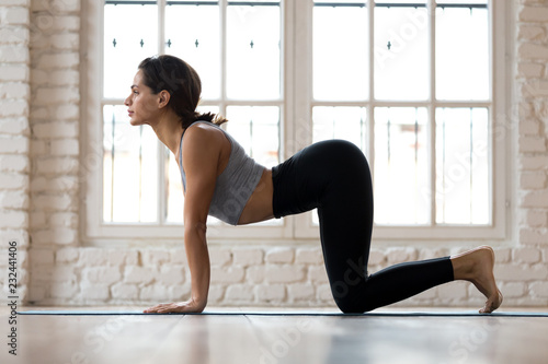 Fotografie, Obraz Young sporty attractive woman practicing yoga, doing asana paired with Cat Pose