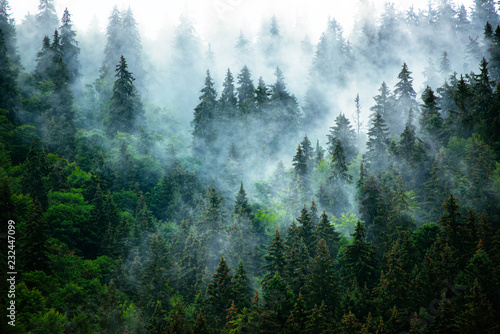 Photo sur Toile Noir Misty mountain landscape