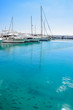 Marine life in turquoise waters at Moraira port, with luxury yachts docked in the background, Costa Blanca, Spain