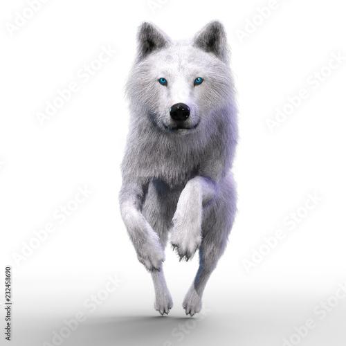 digital-3d-illustration-of-a-wolf