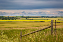 Alberta Canada Countryside Wit...