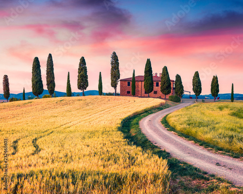 Montage in der Fensternische Honig Typical Tuscan view with farmhouse and cypress trees. Colorful summer view of Italian countryside, Val d'Orcia valley, Pienza location. Beauty of countryside concept background.