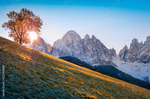 Poster Lavendel Amazing view of Santa Maddalena village hills in front of the Geisler or Odle Dolomites Group. Colorful autumn scene of Dolomite Alps, Italy, Europe. Beauty of countryside concept background.