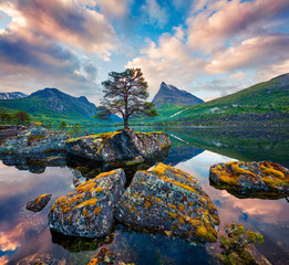 Fototapeta Inspiracje na lato Fantastic summer sunrise on the Innerdalsvatna lake. Colorful morning scene in Norway, Europe. Beauty of nature concept background. Artistic style post processed photo.