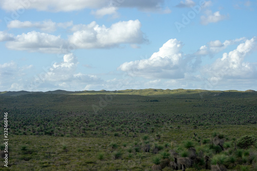 Green landscape of Perth outback
