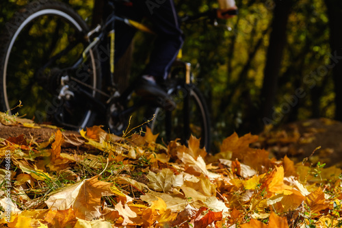 Staande foto Herfst Bike and autumn leaves. Bicycle on ground covered in fallen autumn leaves.