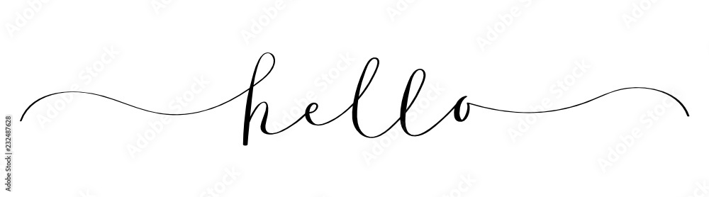 Fototapeta HELLO brush calligraphy banner