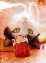 Katze Mit Weihnachtsengel - Wunderschöne Collage Für Weihnachtspost / Cat With Christmas Angel - Beautiful Collage For Christmas