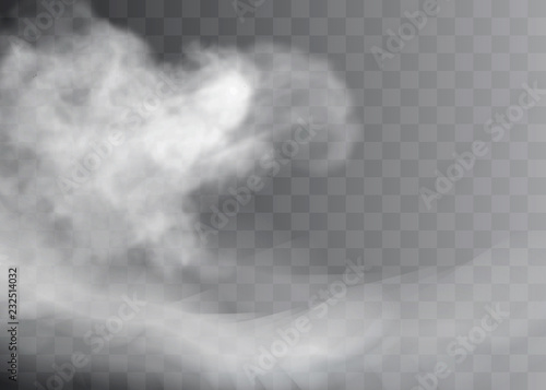 Obraz Transparent special effect stands out with fog or smoke. White cloud vector, fog or smog. - fototapety do salonu