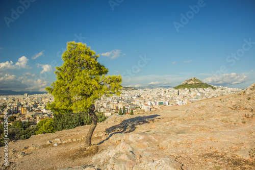 Staande foto Blauwe jeans Lonely green tropic tree on top of rock with view to big south capital city from above